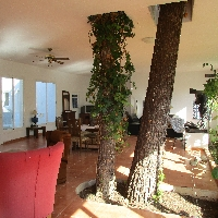 Casa situada en bosque de 300 m2 Villafranca Malloca