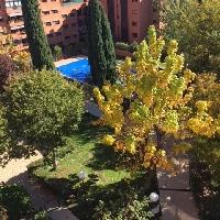 PISO DE 3 HABITACIONES CON TERRAZA EN QUINTA DE LOS MOLINOS (MADRID)
