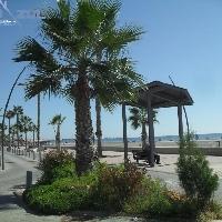 Apartamento en Santa Pola (Playa del Tamarit)