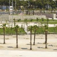 Local comercial en venta en zona El Fortí Palma de Mallorca