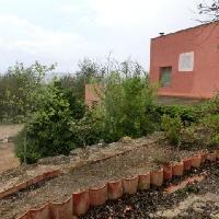 Finca rústica con casa en venta en Ulldecona