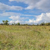 Terreno de cultivo en venta en Marratxinet