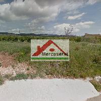 Finca rústica de regadío en venta en pueblo de Alcanar